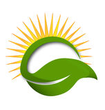 Green leaf sun rays vector logo Royalty Free Stock Images