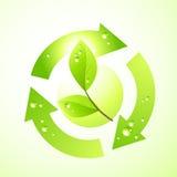 Green Leaf Symbol Stock Image