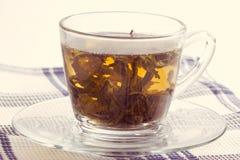 Green leaf tea Stock Photography