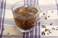 Green leaf tea Stock Photos