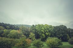 Green Leaf Trees Under Cloudy Sky Stock Photo