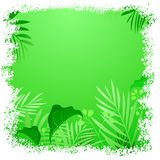 Green leaf tropical frame Stock Photography