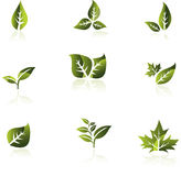 Green leaf vector set. vector illustration