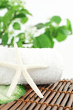 Green Leaf and White Towel on Bamboo Royalty Free Stock Photos