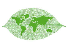 Green leaf world map, vector Stock Photos