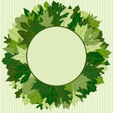 Green Leaf Wreath. For spring or summer Stock Images