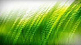 Green Leaf Yellow Beautiful elegant Illustration graphic art design Background. Green Leaf Yellow Background Beautiful elegant Illustration graphic art design stock illustration