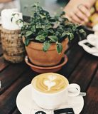Green Leafed Plant Near Coffee Filled White Ceramic Cup royalty free stock photography