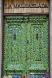 Green leafes painted door Royalty Free Stock Photo