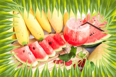 Green leafs background with water melon summer Stock Photography