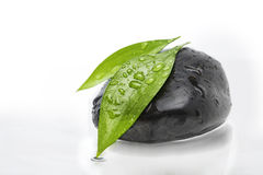 Green leafs on black stone. Two green leafs on black stone Stock Photos