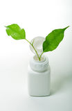 Green leafs and bottle Royalty Free Stock Images