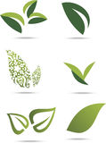 Green leafs Royalty Free Stock Photo