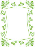 Green leafs frame. With white background - vector illustration Stock Photography