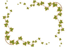 Green Leafs Frame - Vector Stock Photography