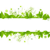 Green Leafs And Grass. Isolated On White Background, Vector Illustration Royalty Free Stock Image