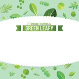 Green leafy Stock Images