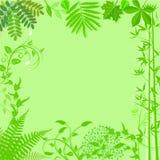 Green leafy border Royalty Free Stock Photos