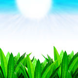 Green leafy border with sunny blue skies Royalty Free Stock Image