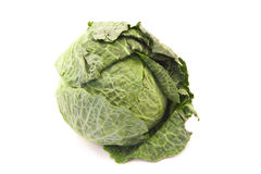 Green leafy cabbage isolated Royalty Free Stock Images