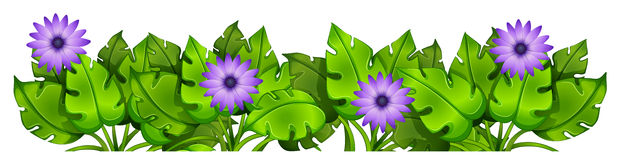 Green leafy plants with flowers Stock Photography
