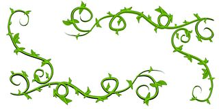 Green Leafy Vines Clip Art. A clip art illustration of a set of green leafy vines isolatd on a white background. Can be used as is, or add your own flowers or Royalty Free Stock Images