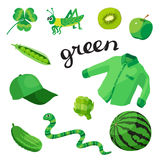 Green. Learn the color. Education set. Illustration of primary colors. Vector illustration Royalty Free Stock Photography