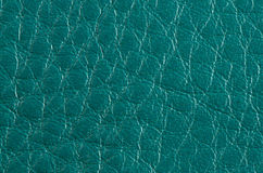Green leather Stock Images