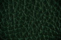 Green leather Stock Photos