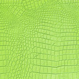 Green Leather Stock Image