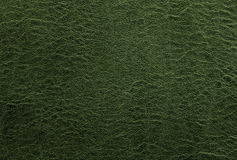 Green leather background or texture. Abstract Stock Image