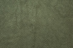 Green leather grained texture background pattern Royalty Free Stock Images