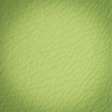 Green leather macro shot Stock Images
