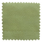 Green leather samples texture Royalty Free Stock Image