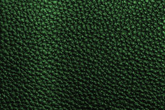 Green leather texture Stock Images