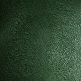 Green leather texture. Closeup as background Stock Image
