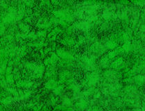 Green leather texture Stock Photos