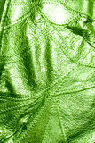 Green Leather Of Texture Background Royalty Free Stock Photos
