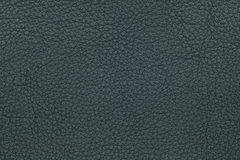 Green leather texture background. Closeup photo. Royalty Free Stock Image