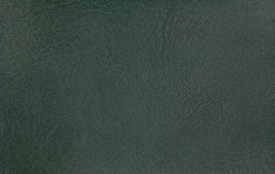 Green leather texture background. Closeup photo. Stock Images