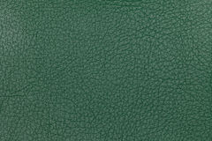 Green leather texture background. Closeup photo. Royalty Free Stock Photos