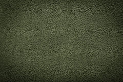 Green leather texture background for design. Stock Image
