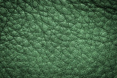 Green leather texture background for design. Royalty Free Stock Photo