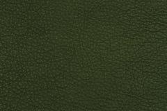 Green leather texture closeup, Stock Photos