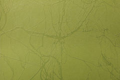 Green leather texture print as background Stock Photography