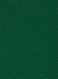 Green leatherette Stock Photo