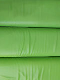 green Leatherette padding Royalty Free Stock Image