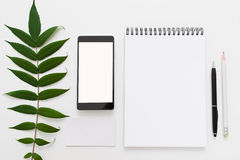Green leave, blank notepad and smartphone flat lay Stock Photos
