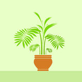 Green leave flower in pot vector Stock Photo