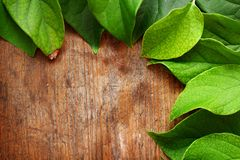 Green leaves. On wooden background Royalty Free Stock Photography